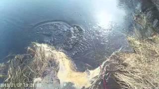 Открытие рыбалки  Весна 2015г