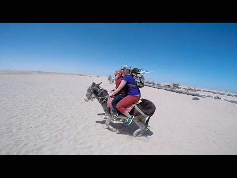 Sahara Desert, Egypt riding on donkeys and horses Part 1