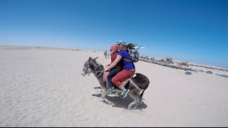 Sahara Desert, Egypt riding on donkeys and horses Part 1