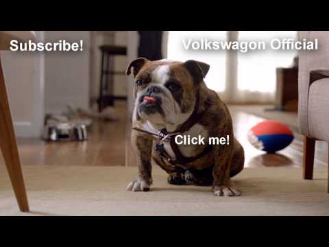 Johnny Cash - Dirty Old Egg Sucking Dog (Volkswagon dog commercial) 1080p