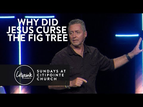 Why Did Jesus Curse The Fig Tree - Mark Ramsey