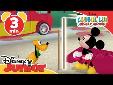 Clubul lui Mickey Mouse - Instalarea cortului. Doar la Disney Junior!