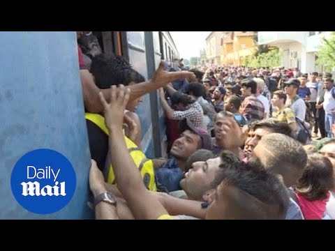 Thousands of migrants brawl at Macedonia train station - Daily Mail