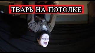 Страшная История - ТВАРЬ на потолке !!!