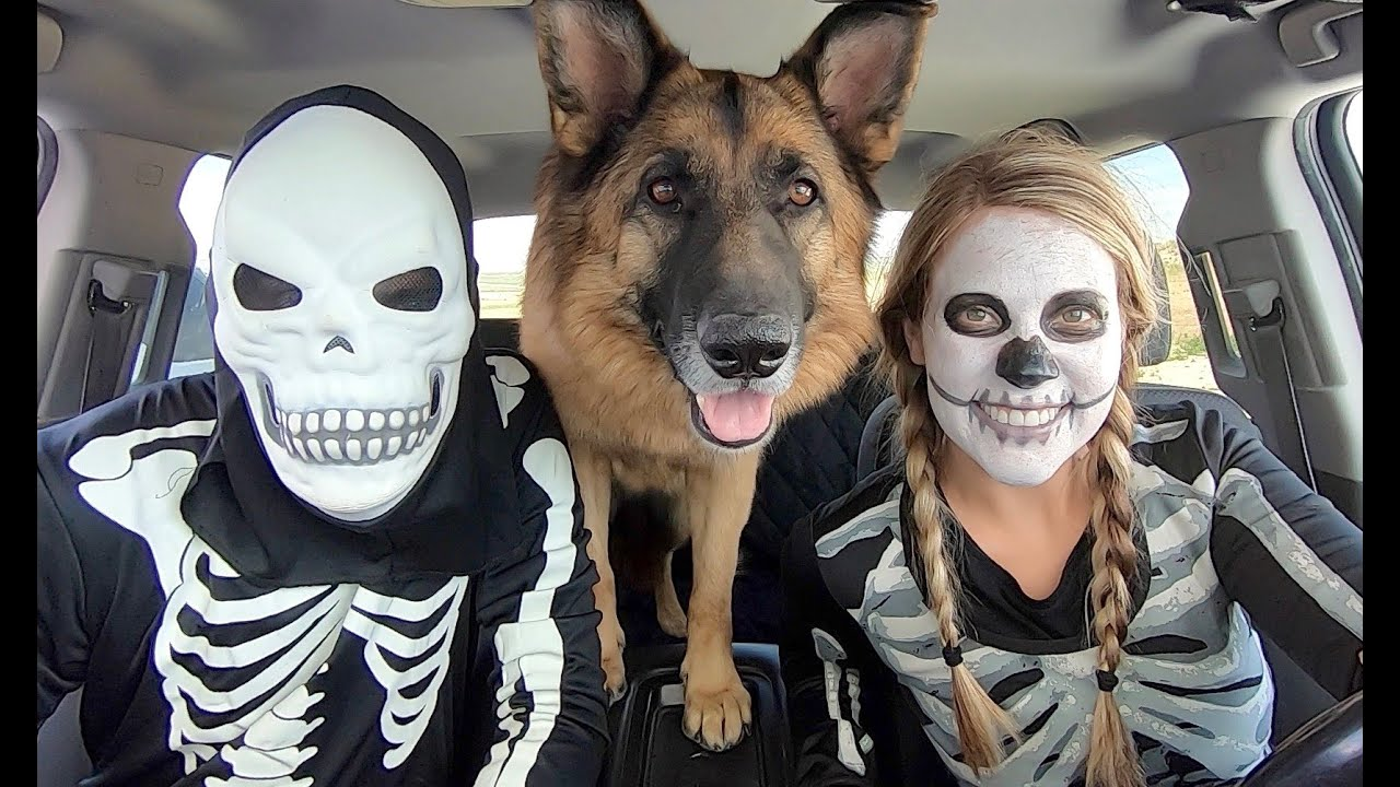 Skeleton Surprises T-Rex & Puppy with Car Ride Chase!