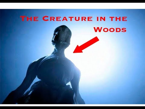 The Creature In The Woods - Full Movie