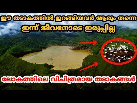 ലോകത്തിലെ വിചിത്രമായ തടാകങ്ങൾ | Most Mysterious Lakes On Earth | Malayalam | QNA
