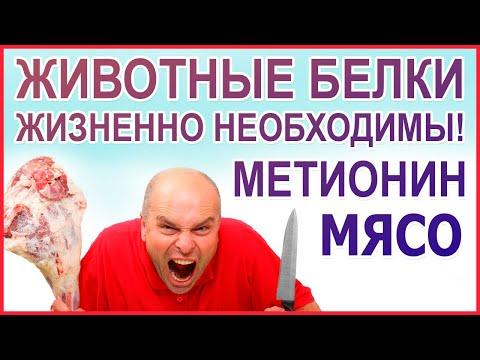 МЯСО нужно есть! Желудок - орган для мяса! Люди - это животные, значит должны есть мясо! Метионин.