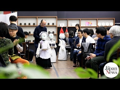 Japanese avatar robots provide disabled chance to work  - The Japan News