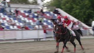Как в Новосибирской области возрождают интерес жителей к конному спорту?