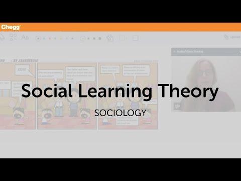 Social Learning Theory   Sociology   Chegg Tutors