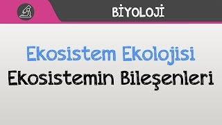 Ekosistem Ekolojisi Ekosistemin Bileşenleri