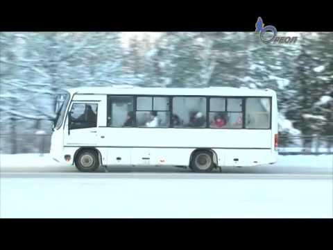 Автотранспортная кампания Сланцы   ПАП восстанавливает все рейсы 851 автобусов