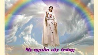 Me Nguon Cay Trong