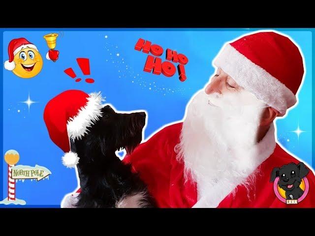 ¡LANA conoce a SANTA CLAUS! y le lleva la Carta! / Funnydogs