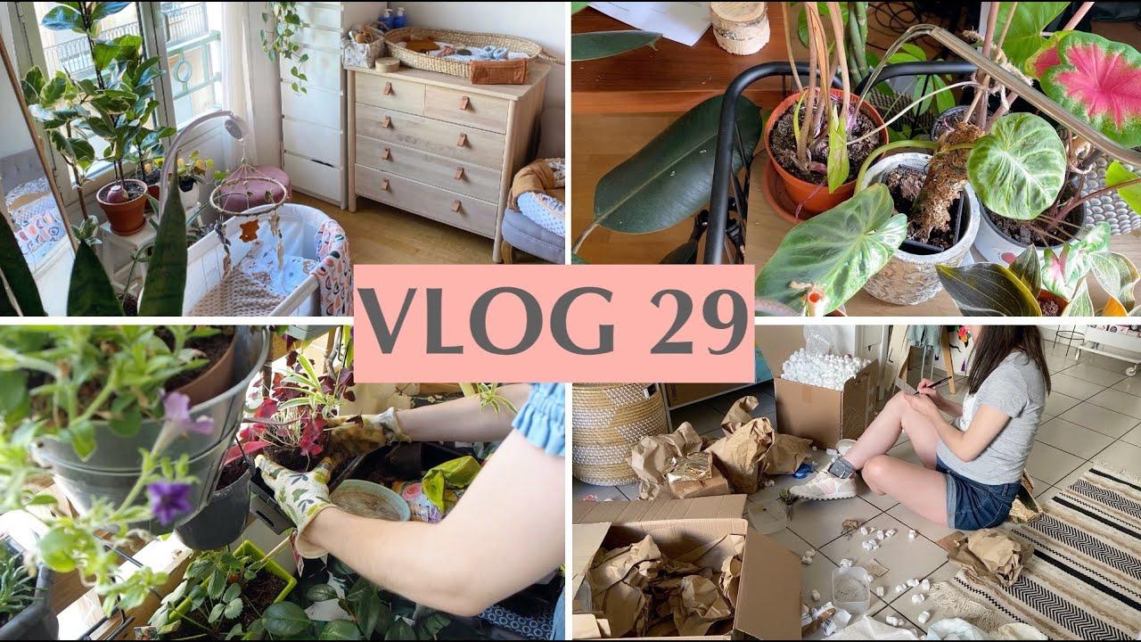 Plantes d'intérieur, Aménagement déco bébé, Recettes & Potager Urbain - VLOG 29