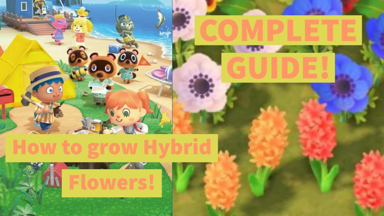 How To Grow Hybrid Flowers Complete Guide Animal Crossing