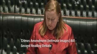 Crimes Amendment Intimate Images Bill I 30th May 2017