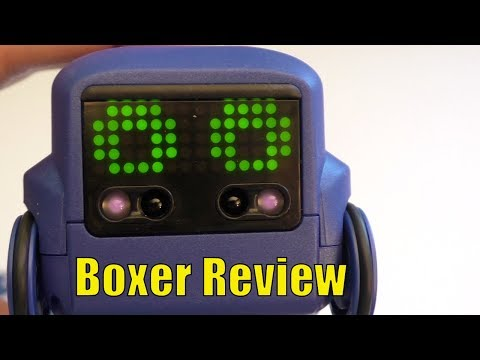 Boxer Bot Review, Hands-On With the Fun New Robot #BoxerBot