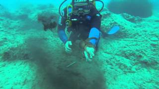 Scuba Diving in Crete - Playing with an Octopus - 17/4/2014