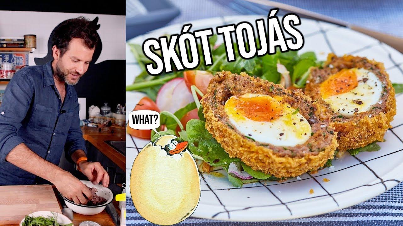 féreg tojás készítése)