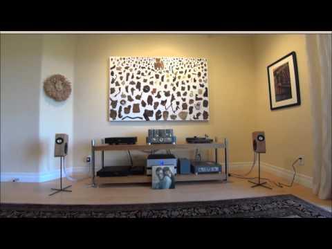 Boenicke W5 System (Vinyl Session!)