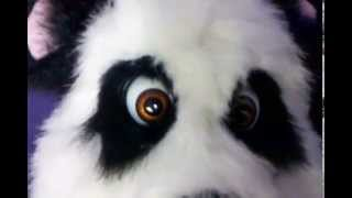 Blinking Eyelids on our Panda Puppet!