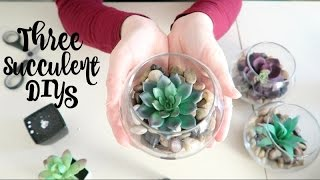 Dollar Tree DIY | Simple Succulent DIYs