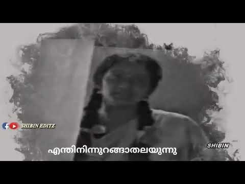പാതിരാവായി നേരം പനിനീർ കുളിരമ്പിളി വാട്സ്ആപ്പ് സ്റ്റാറ്റസ്