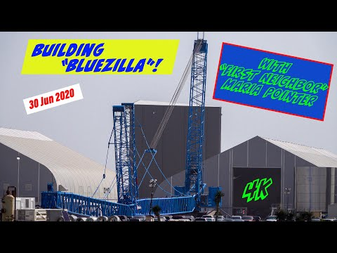2020 06 30 Building Bluezilla (in Elon Time) (3:11)
