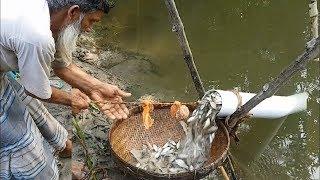मछली पकड़ने के ये 5 तरीके आपके होश उड़ा देंगे || Amazing Modern Fish Traps