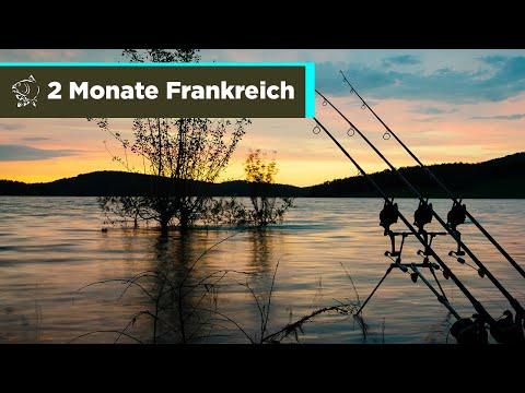 Karpfenangeln - 2 Monate In Frankreich - Zille Und Flipper - NASH TV