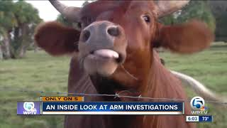 An inside look at ARM investigations