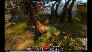 Guild wars 2 perma stealth condition trapper thief troll ghost roaming vol. 6