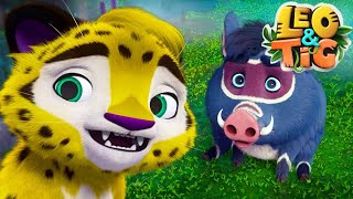 Leo and Tig 🦁 New collection for children 🐯 Fun family Good cartoon for children