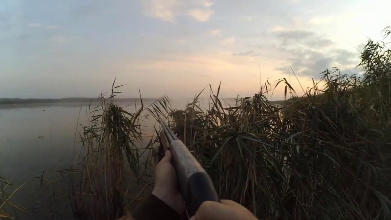 28 шт.Открытие сезона охоты на утку осень 2017. Краснодар / отличная охота
