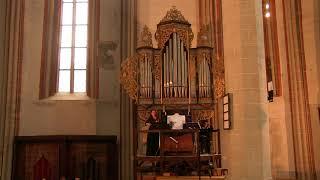Musica Barcensis 2019 - X  - Follia Suavissima