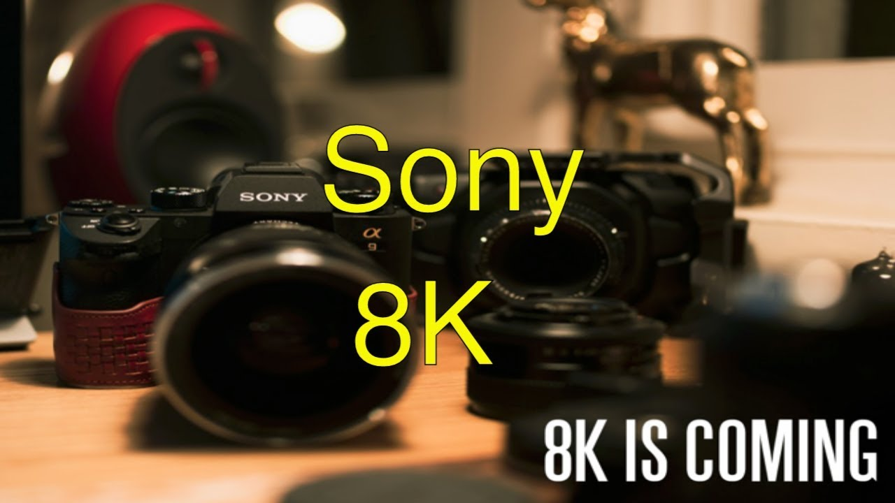 8K Sensor for the Sony a7siii & a7rIV