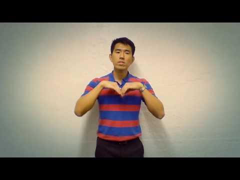 Rise Up Andra Day (Basic ASL)
