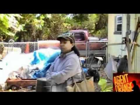 Agent Orange Dioxin Barrels Seen Buried at Gainesville Koppers Superfund Site