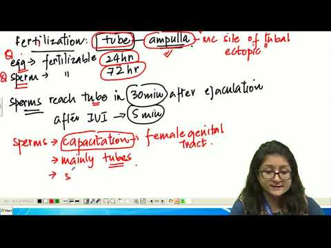 SUBJECT WISE TEST SERIES  - Obstetrics & Gynecology - PART - 3