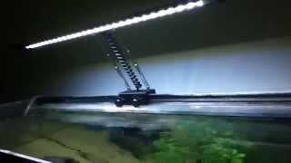hidom aquarium led clip on lamp w 2 colour modes in use