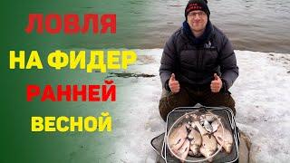 Рыбалка 2021 Рыбалка весной на реке Ловля леща на фидер