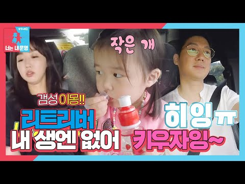 """""""Too many bugs, Song Chang's daughter Ha Yul sweats in a word (ft. Let's go to my house) from YouTube · Duration:  2 minutes 49 seconds"""