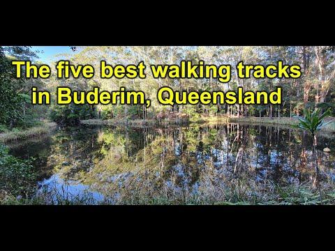 Best Walking Tracks In Buderim, Queensland
