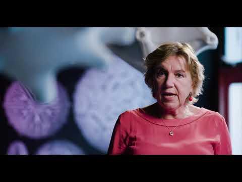 Spinozalaureaat 2019 - Yvette van Kooyk, Amsterdam UMC