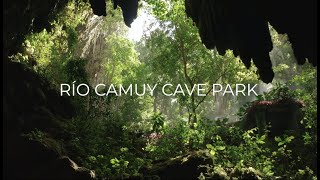 Discover Puerto Rico: Río Camuy Cave Park