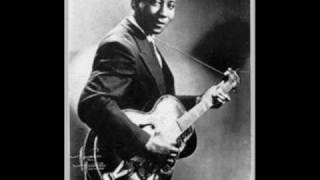 Muddy Waters - Mean Red Spider
