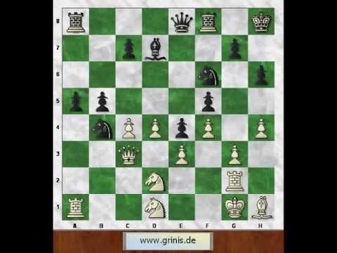 Знаменитые шахматные партии 5. Боголюбов - Алехин. Одна из самых красивых комбинаций всех времен