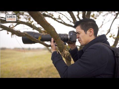 Tamron SP 150-600mm F5-6.3 Di VC USD G2 review vs Tamron 150-600mm - Kamera Express